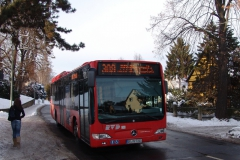 drazdany31